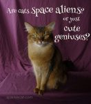 Cats: Space Aliens or Cute Geniuses? Poll!
