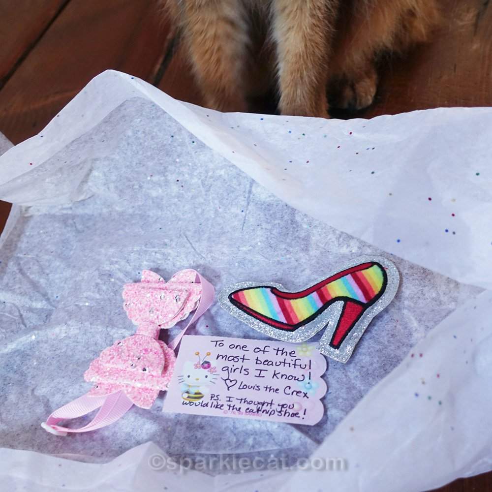 pink bow tie, note and catnip toy