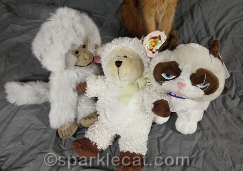 close up of stuffie stand-ins