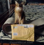 We did not get to play with the package after it was opened. Darn!