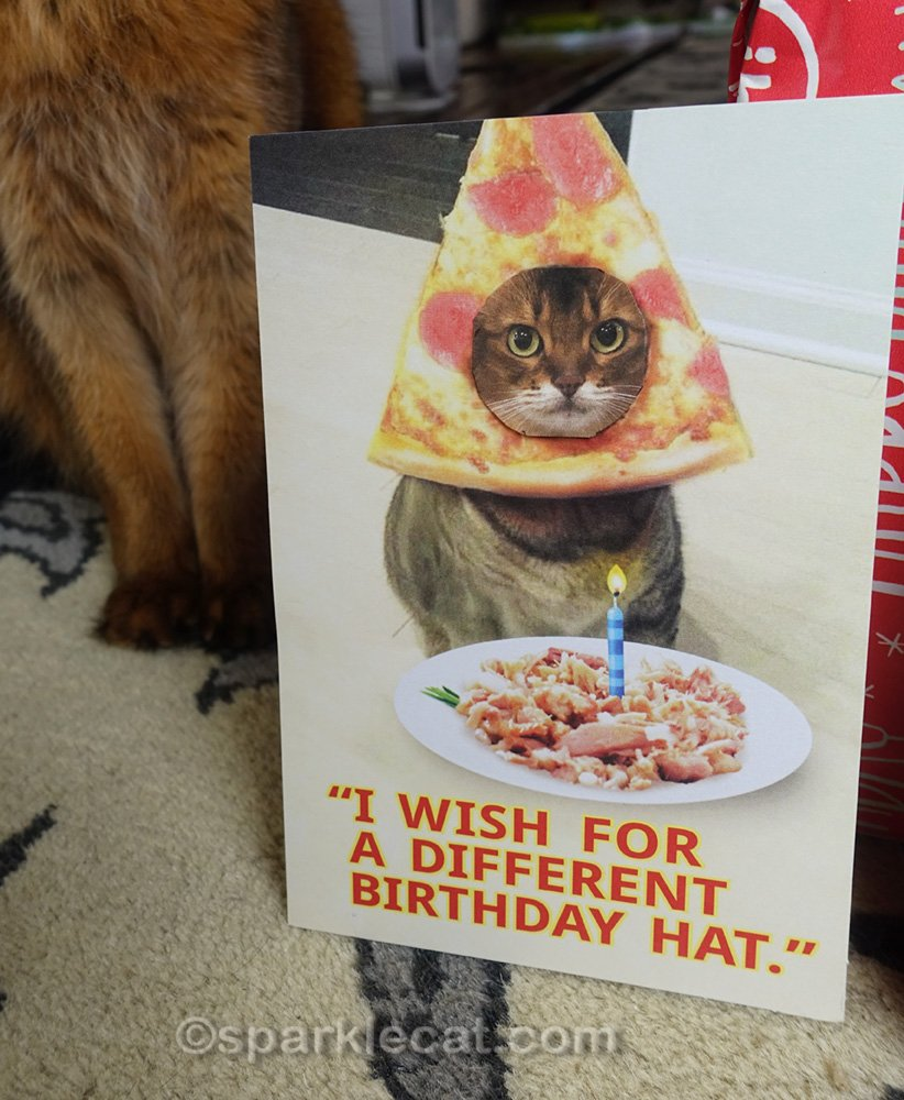 Birthday card with Summer's face taped on it