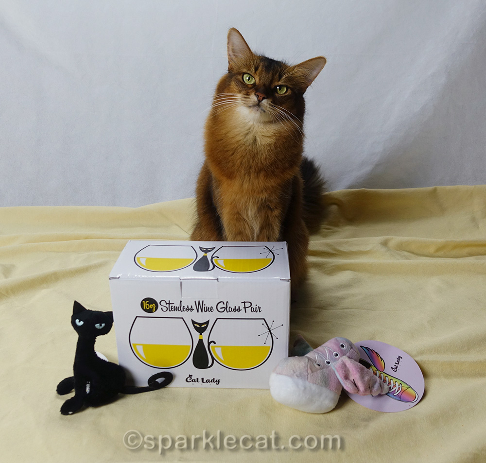 somali cat with kitty wine glasses and cat toys