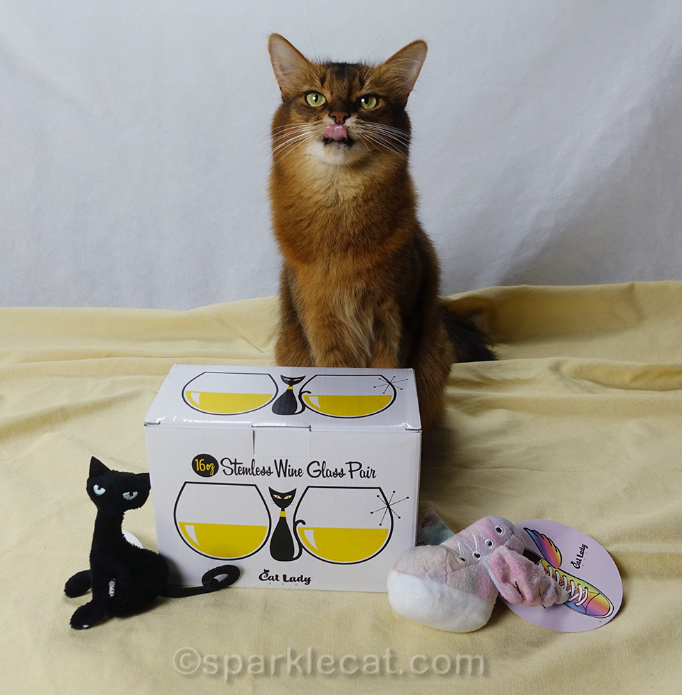 somali cat with kitty wine glasses and tongue out