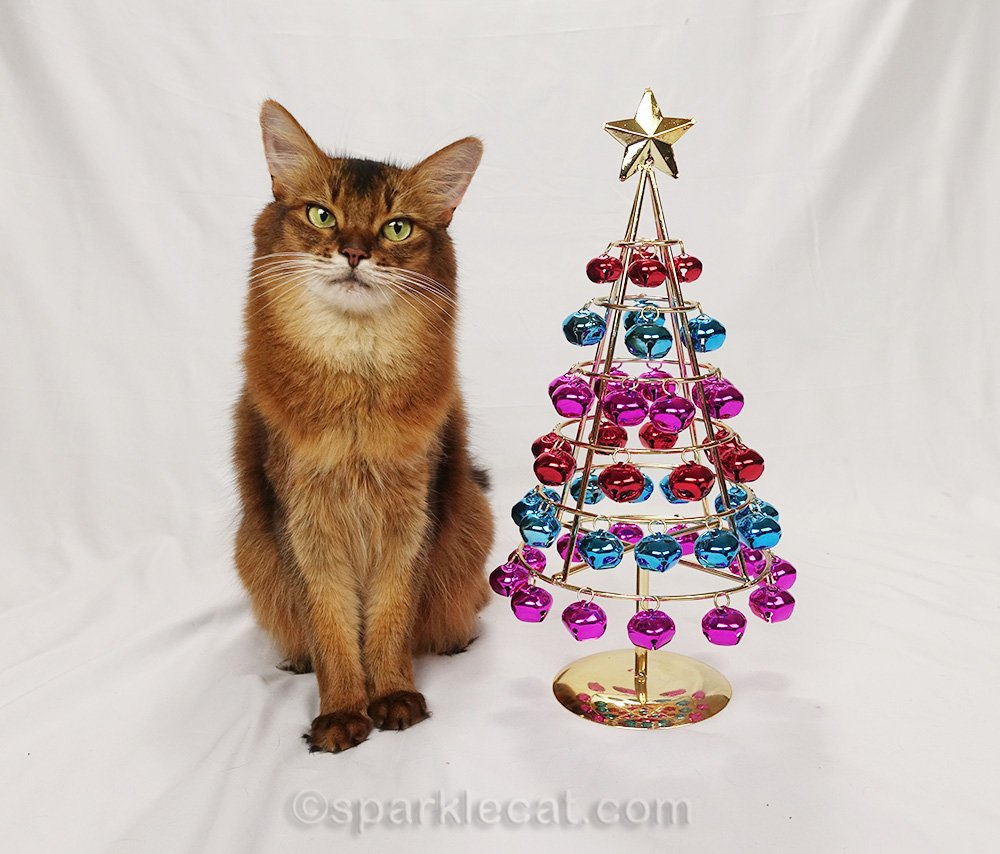 somali cat with jingle bell table top tree