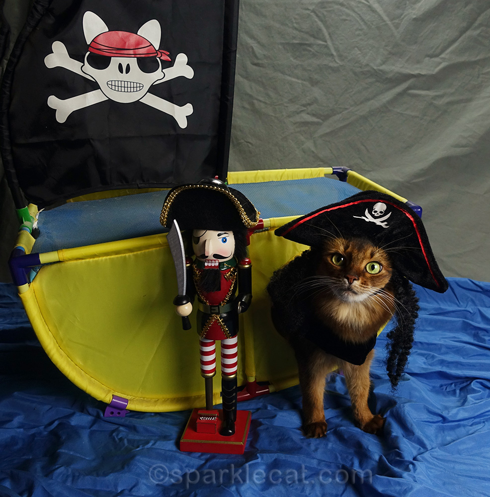 somali cat with her pirate ship and crew
