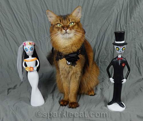 somali cat with day of the dead wedding figurines