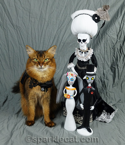 somali cat posing with day of the dead wedding couple and la suegra, or mother-in-law