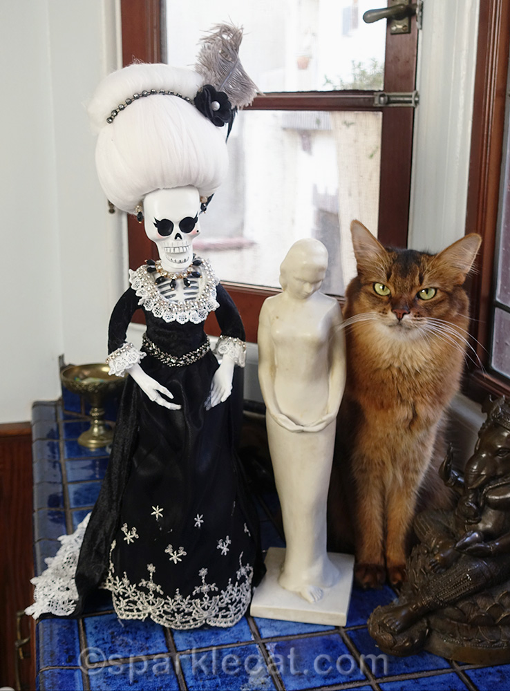 somali cat with CVS day of the dead figurine and actual art sculpture