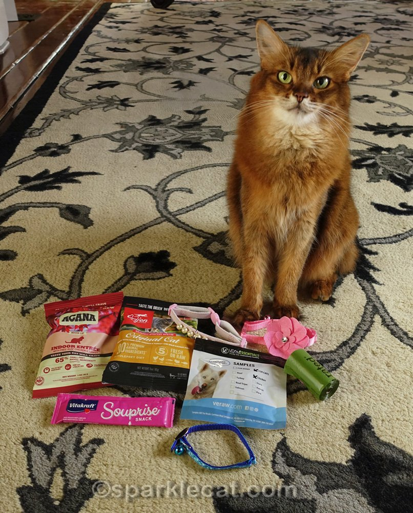cat items from gift bag