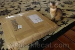 Yes, this was the package Binga was trying to take over in her blog post