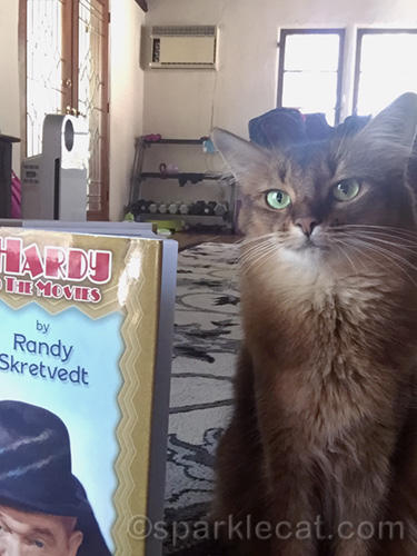 somali cat posing for selfie with Laurel and Hardy book