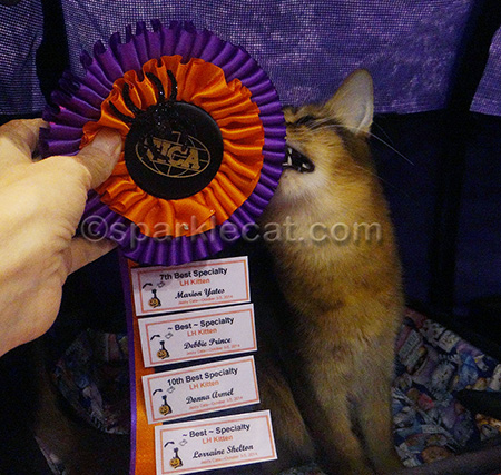 They need to make these ribbons out of something edible