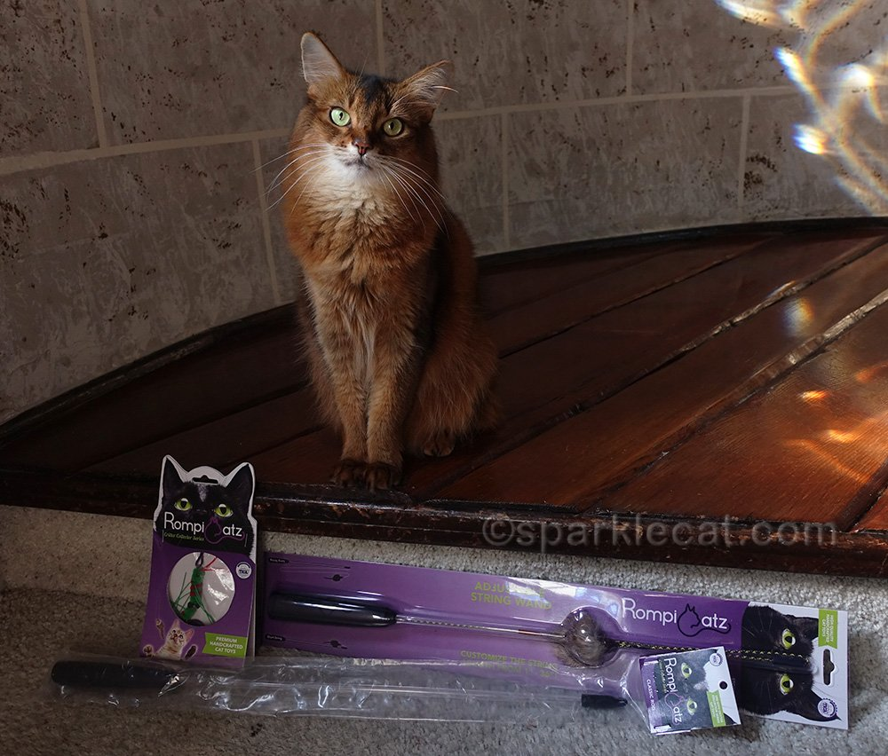 Summer has fun with her new RompiCatz Premium cat toys and has a giveaway for her readers.