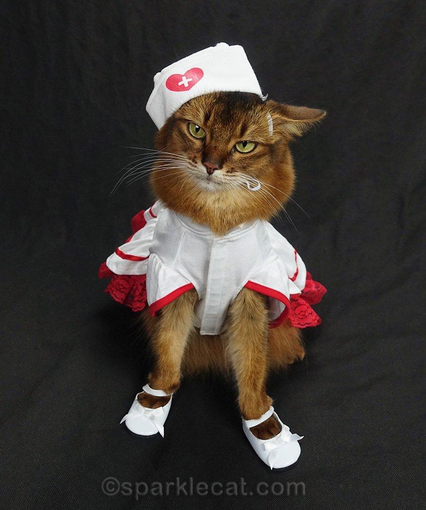 nurse kitty wearing white shoes