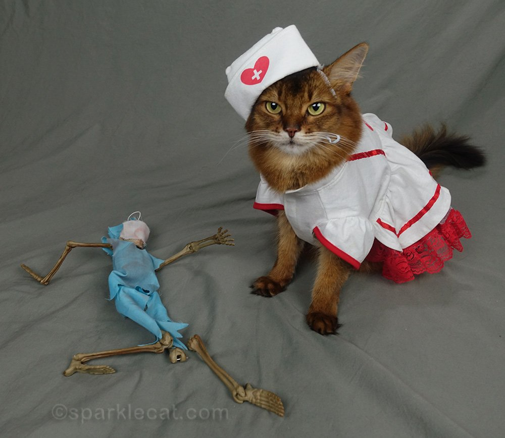 Oh no! Dr. Bones has been injured! Can he be fixed? Summer puts on her nurse's outfit and gets to work.
