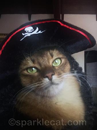 Yo-ho, yo-ho, a pirate's life for me!