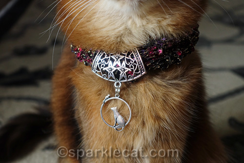 close of up necklace worn by somali cat