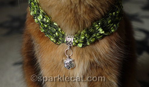 tiger necklace worn by somali cat