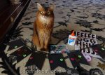 Pet Me Cat Preparations
