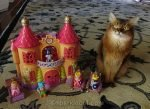 somali cat with hand-me-down castle toy