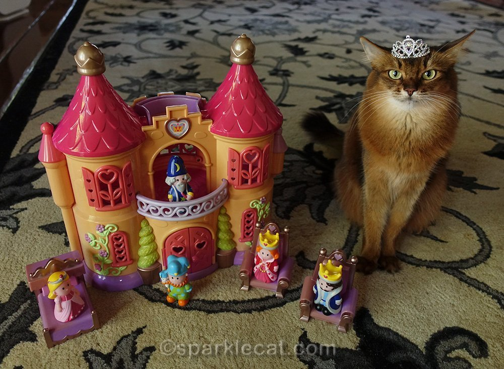 somali cat wearing tiara with castle