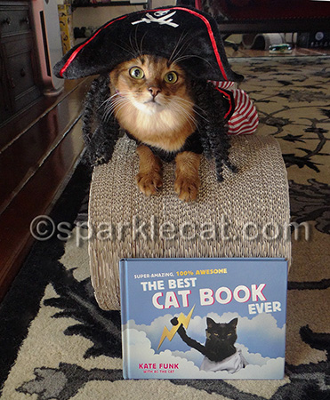 Can we do a book review soon for a cat that does NOT dress up?