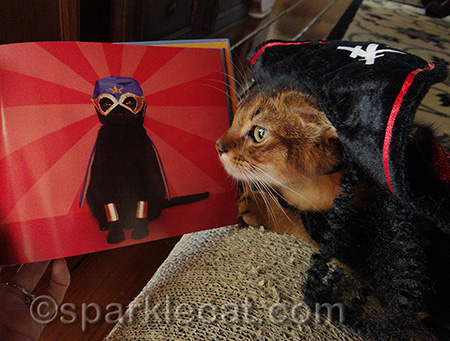 My human's friends combine Lucha Libre with burlesque! But not with kitties