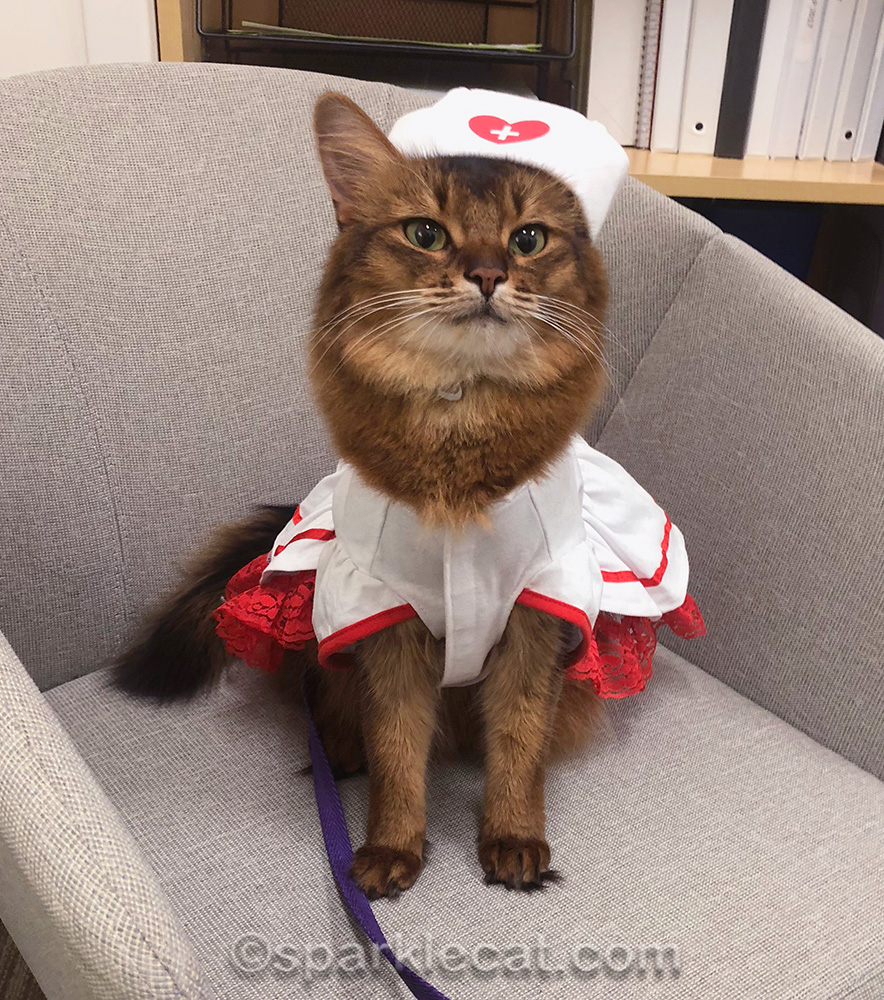 for halloween at the children's hospital, Summer wore her nurse's costume