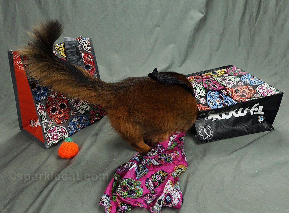 somali cat looking in day of the dead tote bag