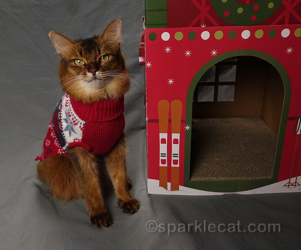 Summer's Christmas gift guide for cat lovers and cats from Etsy