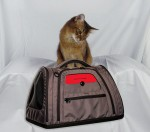 The Hatch Pet Carrier Is Coming – and It's Awesome!