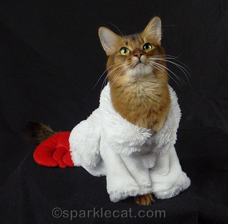 somali cat cat costume cat lobster costume with wings & Christmas Costumes | SparkleCat