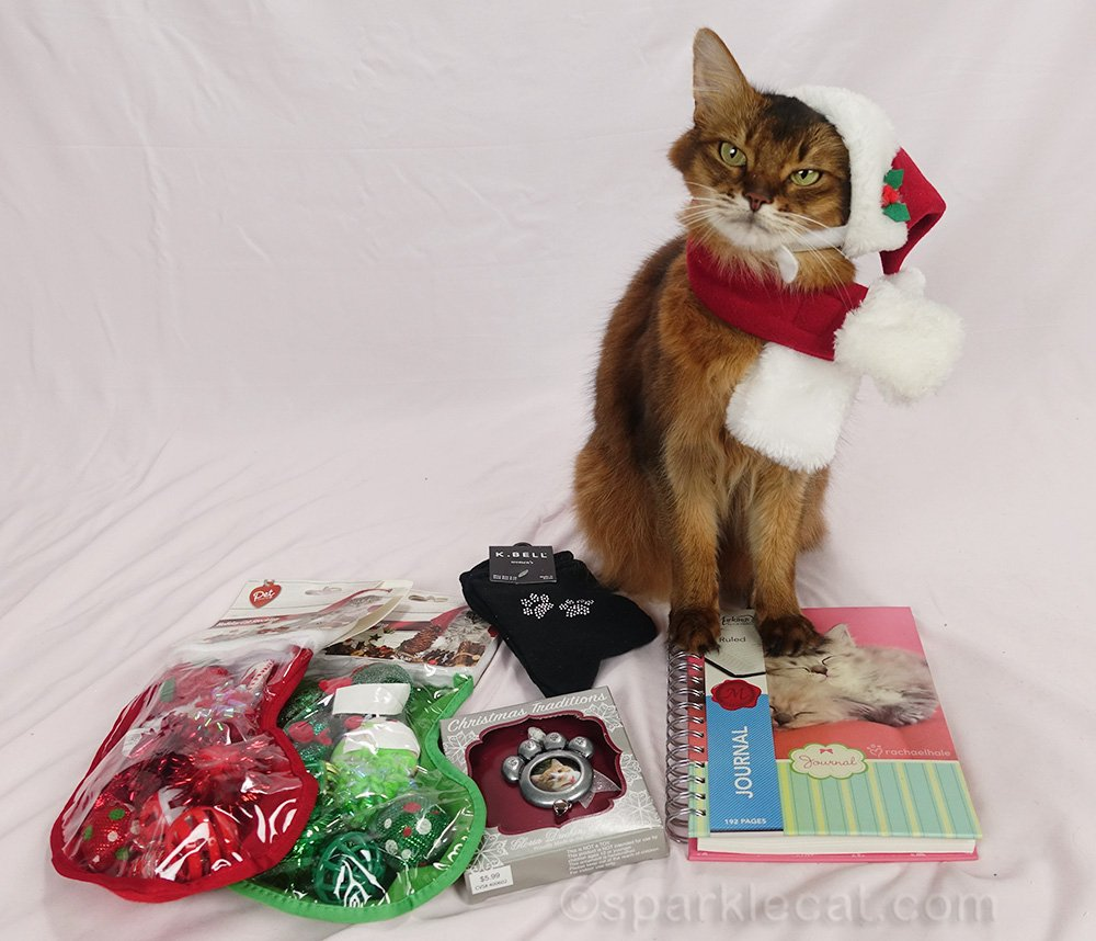 Somali cat in santa hat with items for holiday giveaway