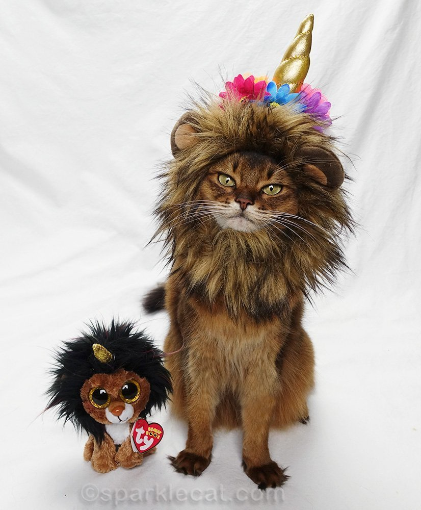 somali cat in lion mane and unicorn horn, next to doppelgänger