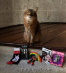 My Holiday Kitty Giveaway!