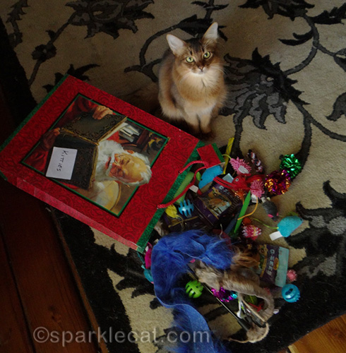 somali cat with toys for Santa Kitty Toy Hop