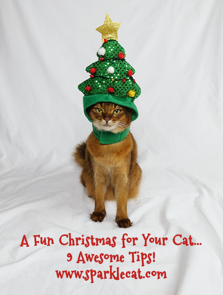 A Fun Christmas for Your Cat - 9 Tips