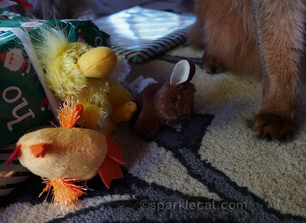 cat toys from secret paw package