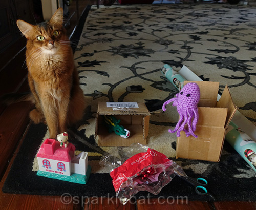 somali cat with gifts to be wrapped