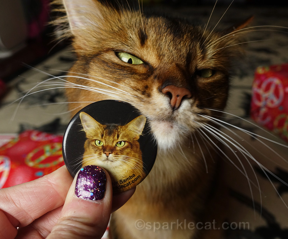 somali cat with her own refrigerator magnet