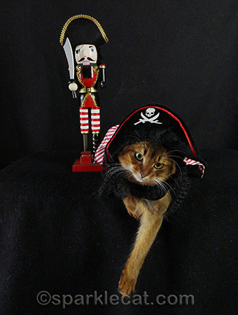 Swab the poop deck! And scoop the litter box while you're at it