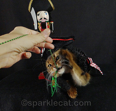 I didn't care about the costume as long as I could kill the Neko Fly!