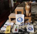 Ambassador Cat!