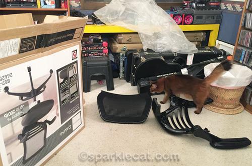 somali cat examining chair parts