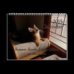 Summer's 2015 calendar