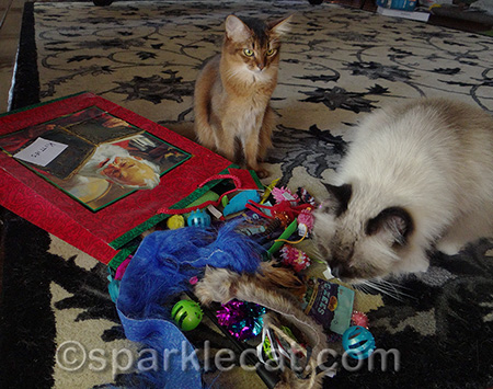 I needed help with all these toys!