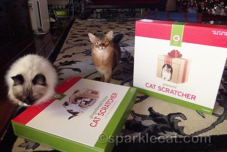 target cat scratchers, christmas cat scrathers, somali cat, ragdoll cat