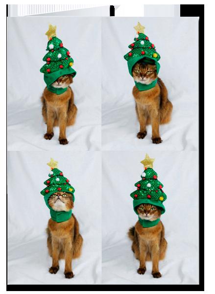 Cat Christmas Tree Hat Greeting Card