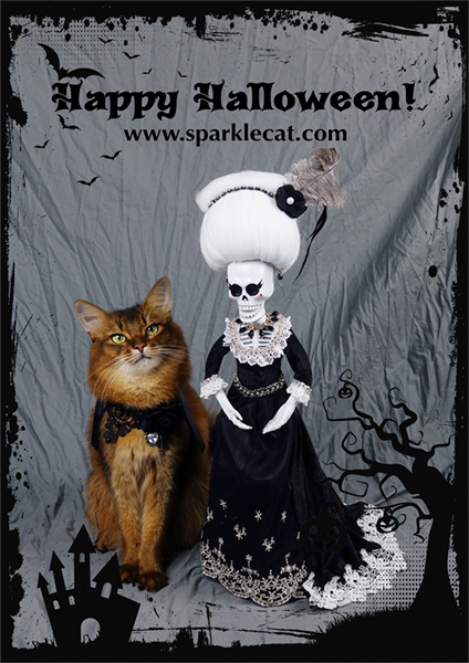 somali cat with la suegra for happy halloween