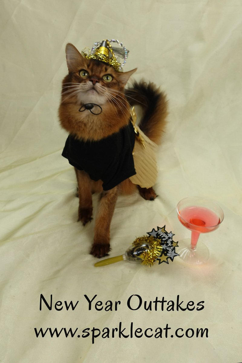 Summer shares some outtakes from her New Year\'s Eve photo shoot.